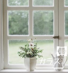 窓・ガラス用洗剤