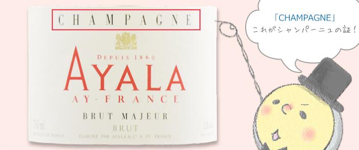 シャンパン ラベル