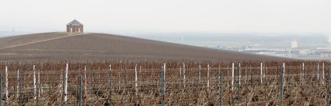 ルノーブル シュイィ村> <p>ル・ノーブルはリュット・レゾネ(減農薬農法)を早くから始めたメゾンの一つでもあります。土壌を尊敬し、化学肥料は使いません。リュット・レゾネを始めてからブドウの収量は減りましたが、熟度の高いブドウが得られるようになったといいます。</p> <img src=