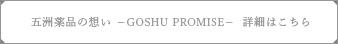 五洲薬品の想い GOSHU PROMISE 詳細はこちら
