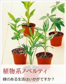 植物系ノベルティ|緑のある生活はいかがですか?