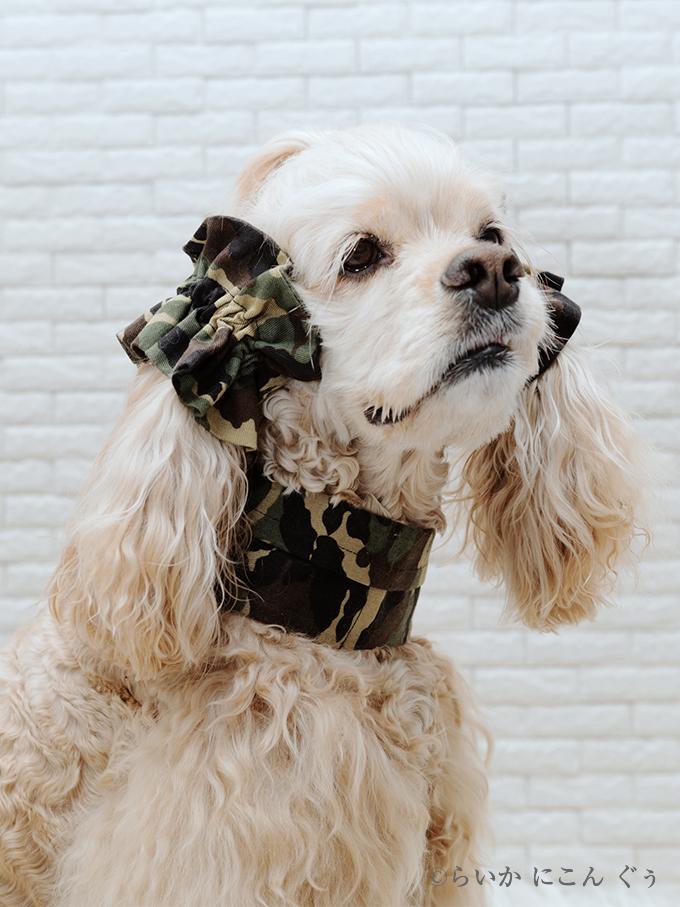 犬用 クールネック 熱中症対策 イヤーシュシュとコーディネート 迷彩シリーズ(ウッドランドカーキ)