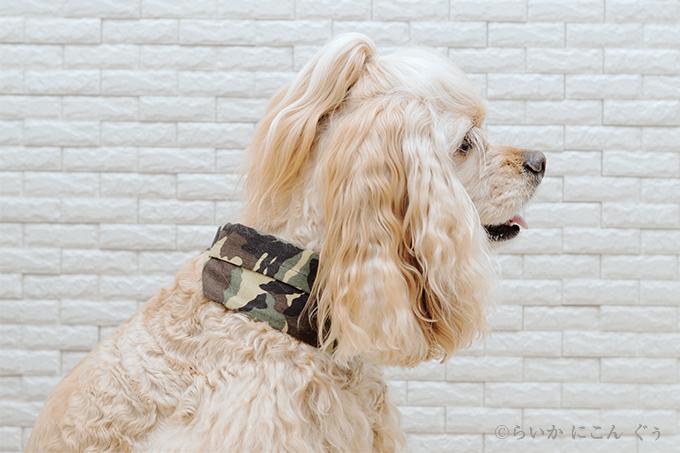 犬用 クールネック 熱中症対策 横から