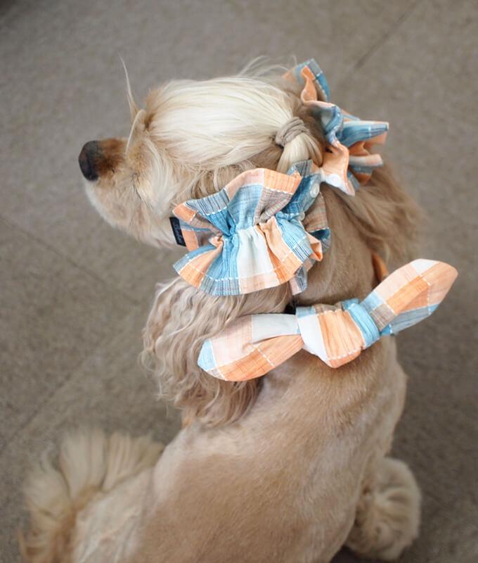 犬用 クールネック 熱中症対策 サマーチェック 夕暮れオレンジ 後ろ姿