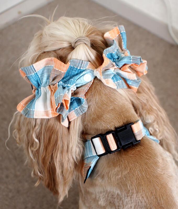 犬用 クールネック 熱中症対策 サマーチェック 夕暮れオレンジ リボンがない時