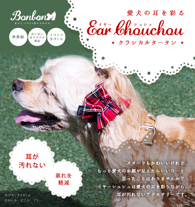 愛犬の耳を彩るイヤーシュシュ クラシカルタータン