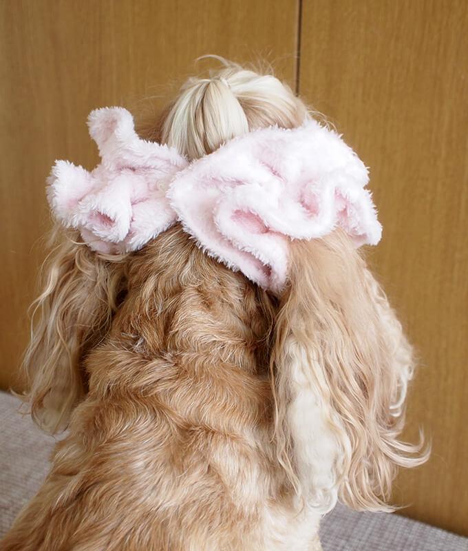 イヤーシュシュ 犬 フラッフィーシリーズ(ピンク) だいもん部長 後ろ