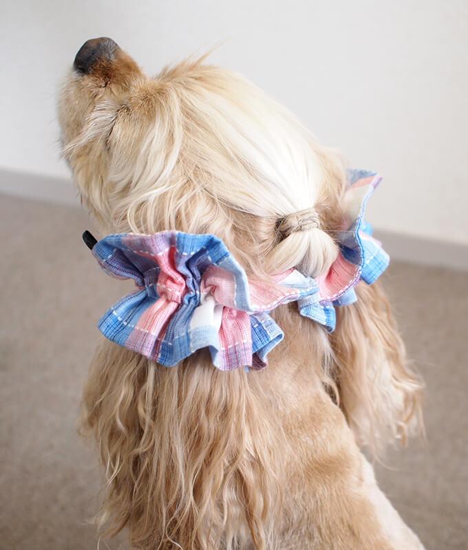 愛犬の耳を彩るイヤーシュシュ  サマーチェック 朝焼けピンク だいもん ななめ後ろ 左側