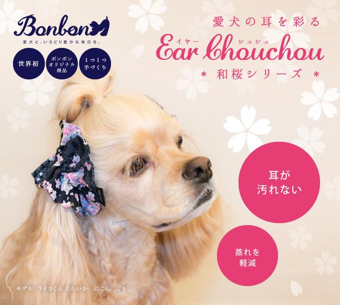 愛犬の耳を彩るイヤーシュシュ 和桜