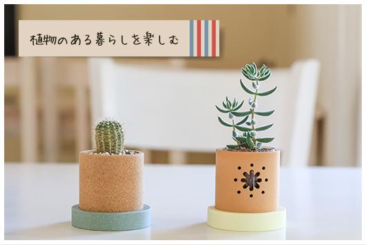 植物のある暮らしを楽しむ
