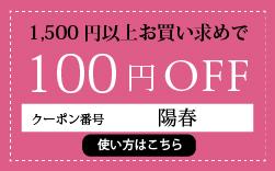 今スグ使える100円offクーポン