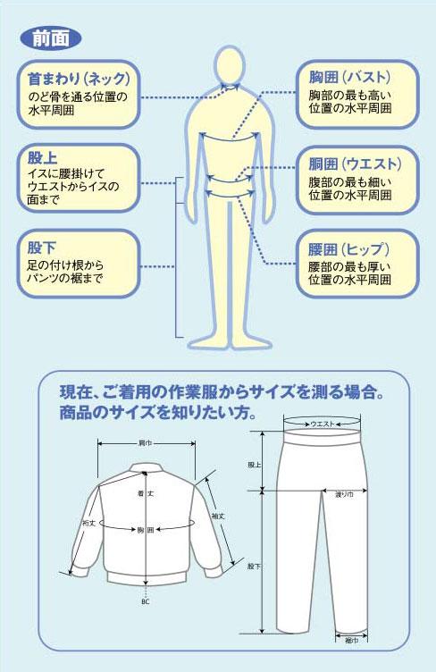 首回り(ネック)、股上、股下、胸囲(バスト)、胴囲(ウエスト)、腰囲(ヒップ)