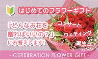 はじめてのフラワーギフト どんなお花を贈ればいいの?にお答えします