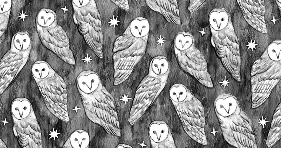・OWL(ホリー アウル)