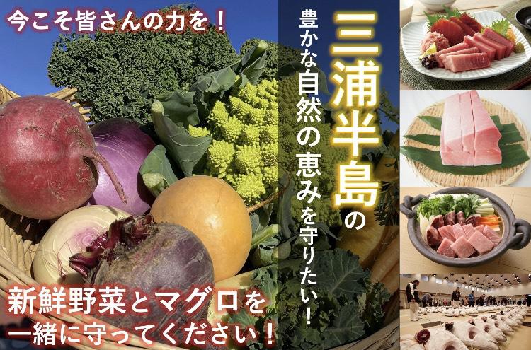 食ロスストップ!三浦半島の大自然の恵みがコロナでピンチ!