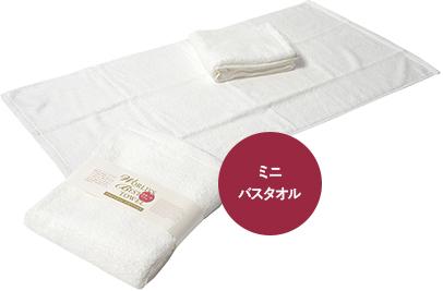 今治タオルの世界一のタオルミニバスタオルイメージ