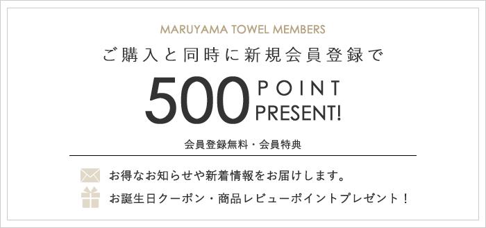 ポイント開始キャンペーン、新規会員登録で次回お買い物に使える500ポイントプレゼント!