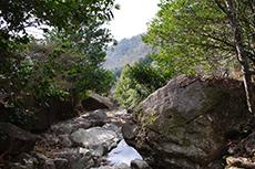 兵庫百選「竹谷山」の写真