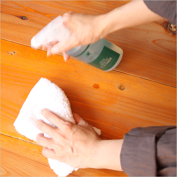 GREEN MOTION ECO CLEANER