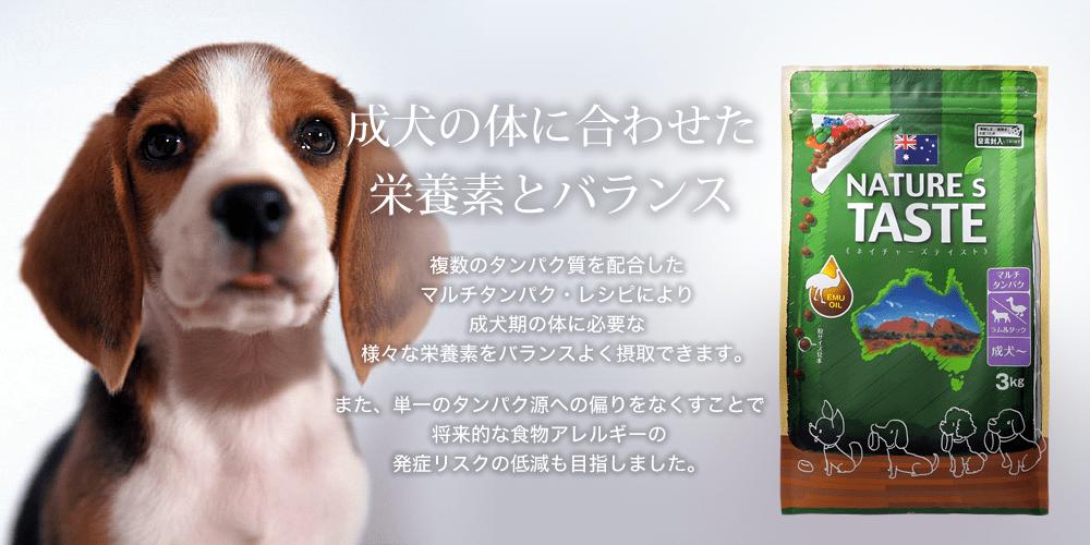 成犬の体に合わせた栄養素とバランス