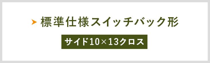 標準仕様スイッチバック形 サイド10×13クロス