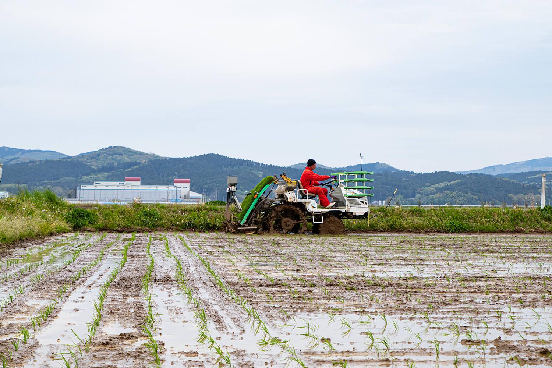 農園の紹介2