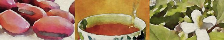 なた豆水彩イラスト
