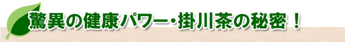 脅威の健康パワー・掛川茶の秘密!