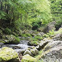 北秋田自然アルバム